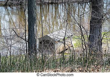 Michigan wooden bridge in trees