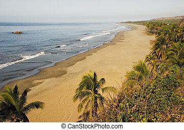 michoacan, océano, playa, pacífico, méxico