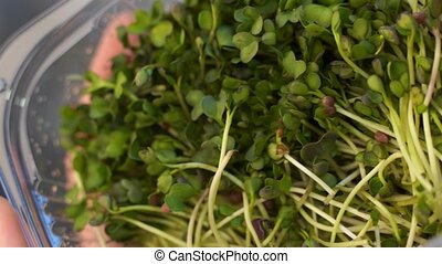 Microgreens bowl on white marble background. superfood concept. High quality photo