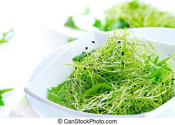 microgreens., hälsosam, grön, salad., litet, sprouts., kost