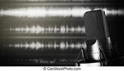 Microphone in a recording studio - professional microphone...