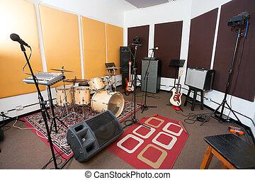 Microphones And Musical Instrument In Studio - Microphones...