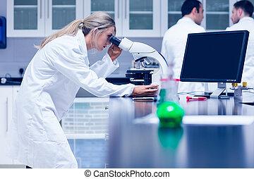 microscópio laboratório, trabalhando, estudante, ciência