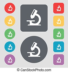 microscope icon sign. A set of 12 colored buttons. Flat design. Vector