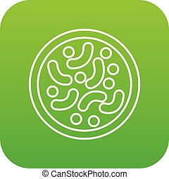Microscopic bacteria icon green vector