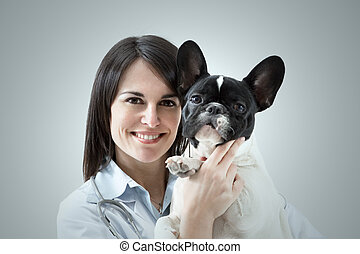 mid adult veterinarian holding french bulldog indoors