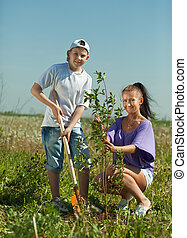 woman with teenager son setting tree - Mid adult woman with ...
