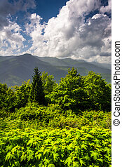 mid-day, vista, de, a, montanhas appalachian, de, a, cume azul, pa