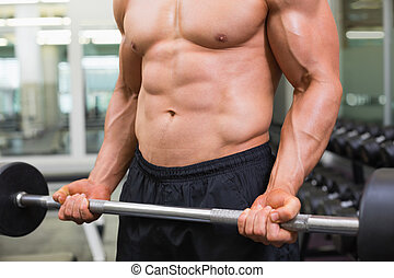 Mid section of a shirtless muscular man lifting barbell