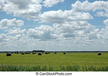 Landscape of the midwest nebraska
