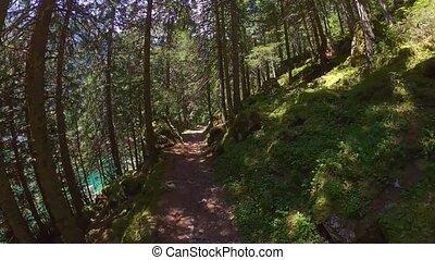 Middle age man hiking in Switzerland mountains - Walking on...