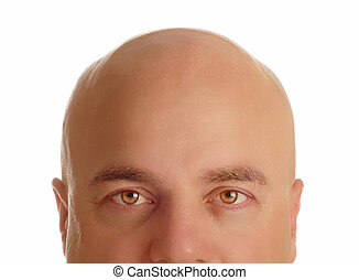 middle age man with bald head