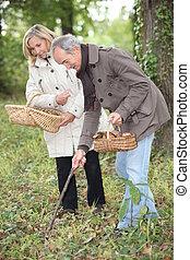 Middle-aged couple gathering mushrooms