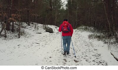 Middle-aged man walks Nordic walking in a snowy forest