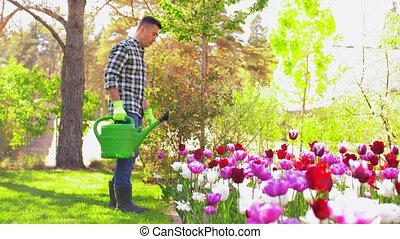 gardening and people concept - middle-aged man with watering can pouring water to flower bed at garden