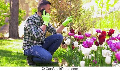 gardening and people concept - middle-aged man calling on smartphone and taking care of flowers at summer garden
