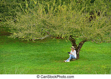Middle aged woman sitting under a tree using tablet computer in the park