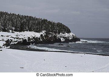 Middle Cove beach Winter scene