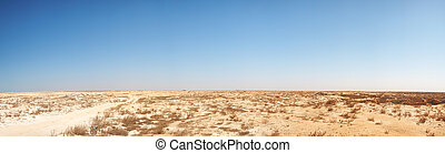 Middle-East desert panorama