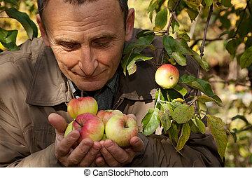 middleaged, azokat, alma, kézbesít, befolyás, szag, ember
