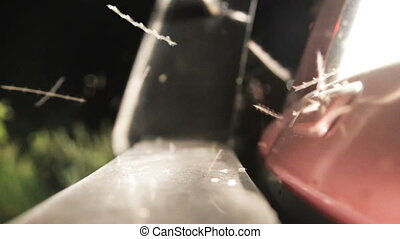 Midges fly to the lights of a car's headlights