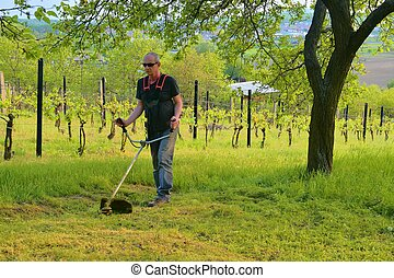 Midle aged man using a brush cutter. Mature man in the garden. Gardening concept
