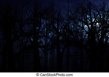 Midnight forest - Dark scary midnight forest, halloween...