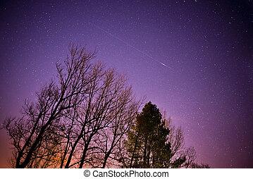 A meteor streaks across the midnight sky.