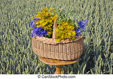 midsummer time various medical herbs wicker basket