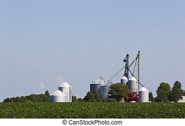midwest, cornfields