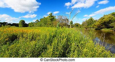Midwest Prairie River Landscape