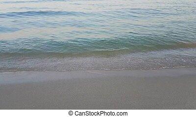 mieć, mały, gra, koźlę, zabawa, plaża.
