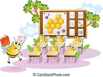 miel, classe, abeilles