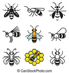 miel, conjunto, abeja, iconos