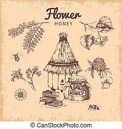 miel, dessiné, fleur, composition, main