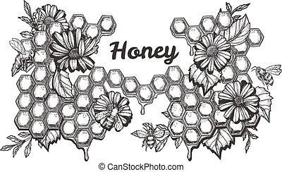 miel, dulce, conjunto, trabajando, abejas