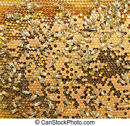 miel, enjambre, abejas, producto