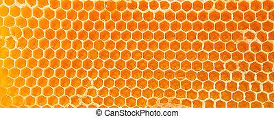 miel, honeycombs., cerveza