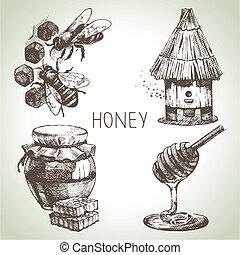 miel, set., main, dessiné, vendange, illustrations