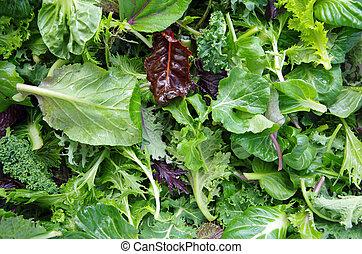 mieszany, pole, sałatkowe ziele
