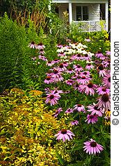 mieszkaniowy, ogród, landscaping