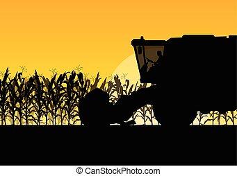mietitore, granaglie, giallo, autunno, campo, vettore, combinare, rurale, astratto, raccolta