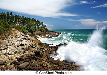 Mighty waves are striking the rocky coast of Souhern Sri ...