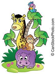 mignon, 2, animaux, divers, africaine