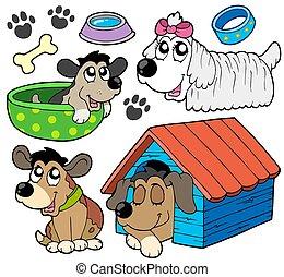 mignon, 2, chiens, collection