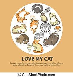 mignon, amour, affiche, promotionnel, animaux familiers, chat, mon