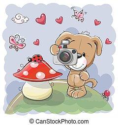 mignon, appareil photo, chien, dessin animé