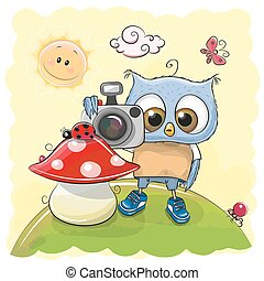 mignon, appareil photo, dessin animé, hibou