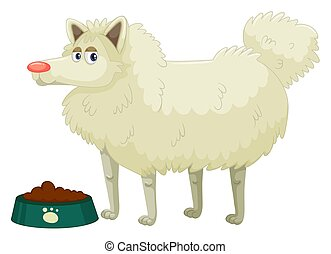 mignon, blanc, fourrure, chien