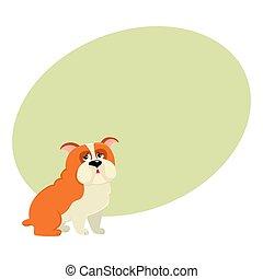 mignon, bouledogue, caractère, isolé, illustration, chien, vecteur, anglaise, dessin animé
